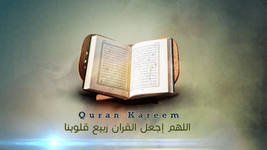 Photo of القران الكريم مترجم الي اشهر لغات العالم