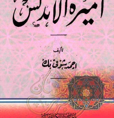 Photo of كتاب أميـرة الأندلـس PDF